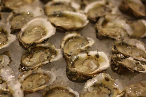 17 best images about oysters 17 best images about oysters on virginia