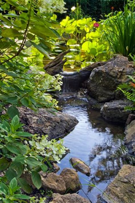 backyard streams best 25 backyard stream ideas on pinterest garden stream small garden stream ideas