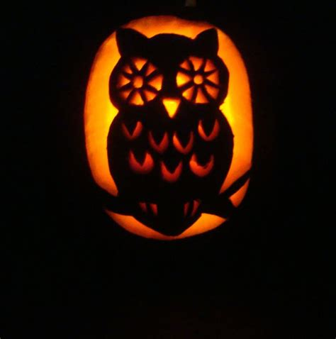 printable owl pumpkin patterns 1000 ideas about owl pumpkin on pinterest owl pumpkin
