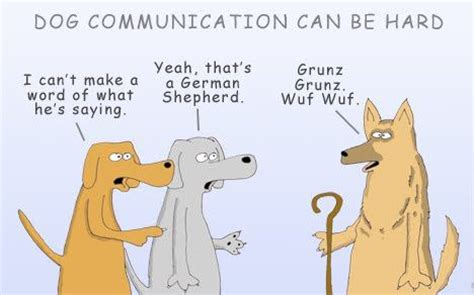 how do dogs communicate how do dogs communicate
