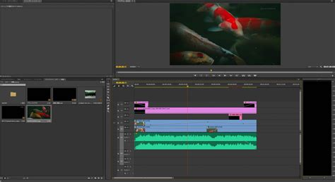 adobe premiere pro without creative cloud quisayh blog