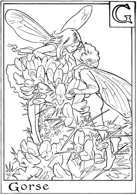 coloring pages detailed fairies detailed fairy coloring page detailed fairy coloring pages