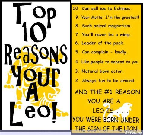 the best 10 reasons why you re the best fill in the blank gift books top 10 reasons you re a leo leos the lions den
