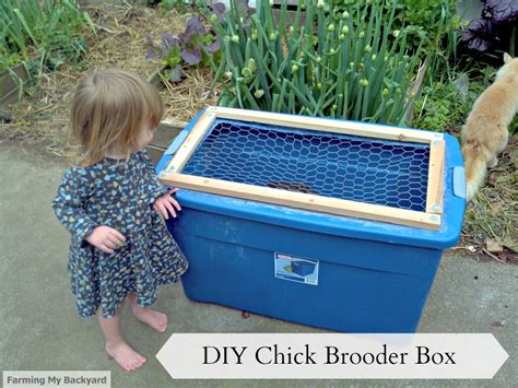 backyard brooder box diy chick brooder box farming my backyard