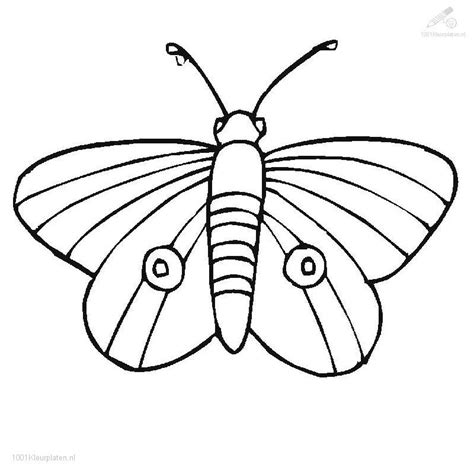 coloring page of painted lady butterfly painted lady butterfly coloring page coloring home