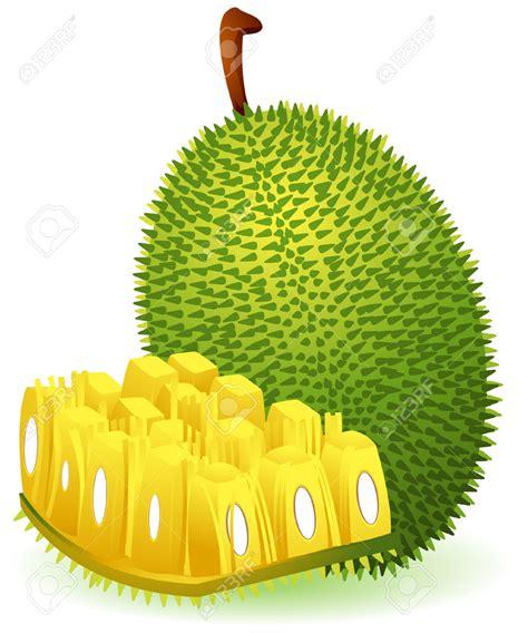 arts clipart fruit clipart