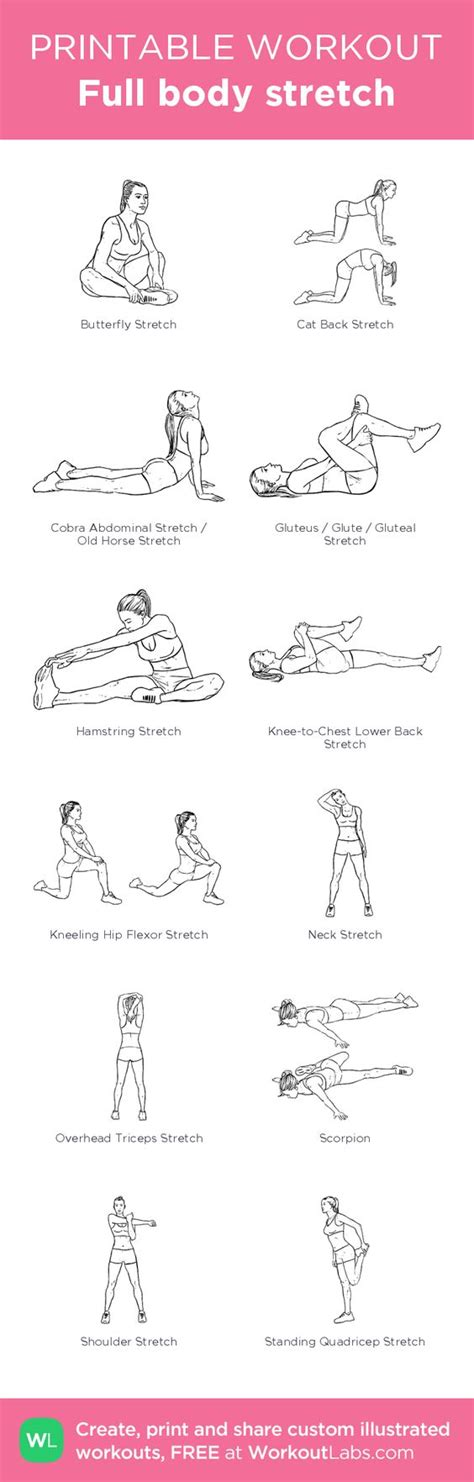 printable flexibility exercises full body stretch created at workoutlabs com click