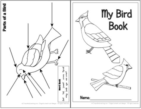bird book think crafts by createforless