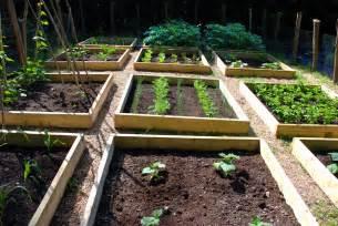 Raised Vegetable Gardens » Home Design 2017