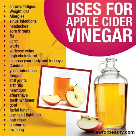 Does Apple Cider Vinegar Detox The by Apple Cider Vinegar Nutrition Health