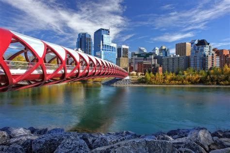 Lookup Calgary Search The Mls For Calgary Real Estate Homes Condos For Sale Newton Home