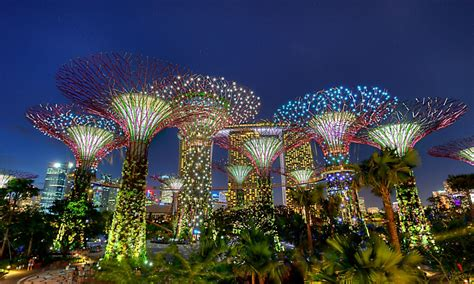 singapore trees of light why kl keeps cutting down trees while singapore doesn t