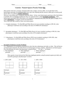 section 6 5 traits and probability study guide answers genetics punnett squares practice packet