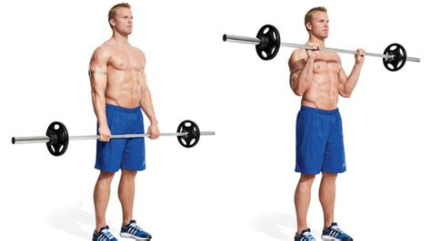 Barbel Curl gain biceps and triceps mass with these 12 exercises and workout gymguider