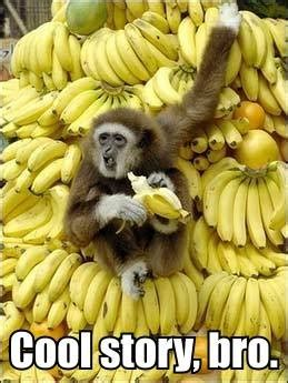 Monkey With Banana Spm 202 quotes on banana quotesgram