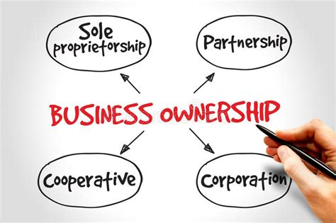 Mba Finance Type Of by Business Ownership Stock Illustration Image 58694378
