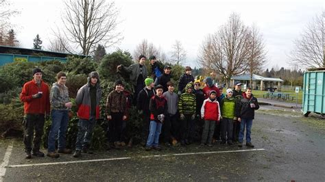 holiday tree recycling in lacey thurstontalk
