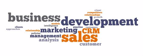 business development and software sales the importance of business development sales