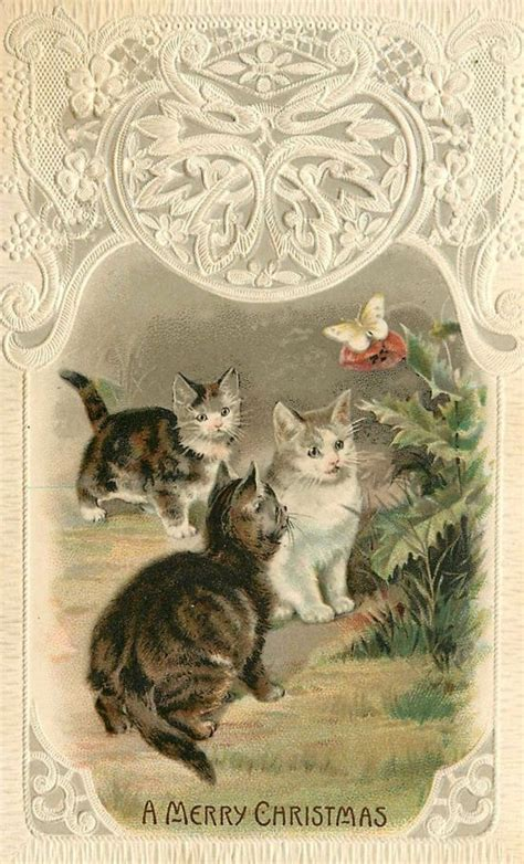 christmas cats images  pinterest christmas cats vintage cards  vintage