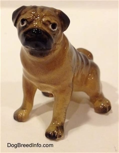 retro mops pug for sale collectable vintage pug dogs