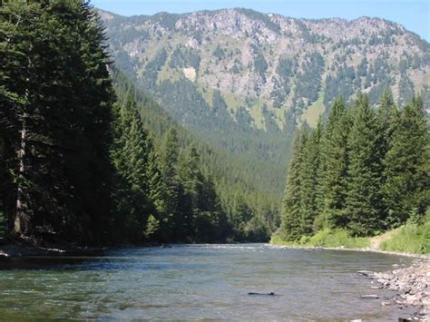 fishing the gallatin river montana gallatin river mt favorite places spaces pinterest
