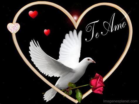 imagenes con movimiento word imagenes de amor con movimiento lindas para dedicar de