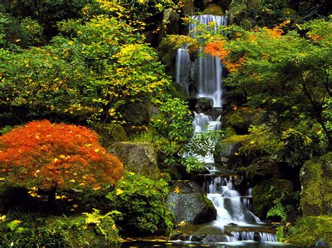 green japanese wallpaper wallpaper waterfall autumn green oregon leaf portland