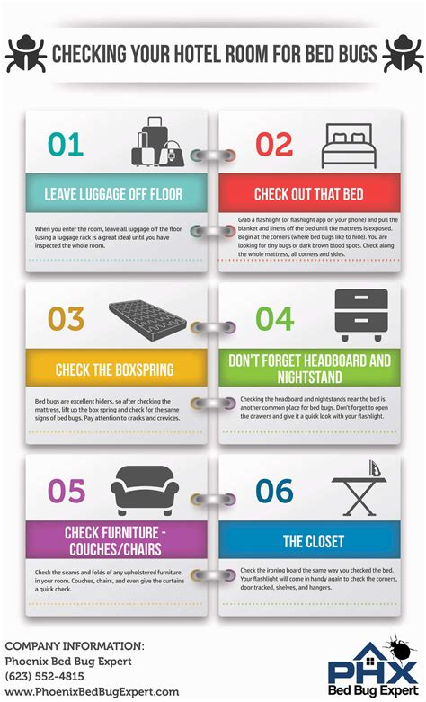 bed bug check infrogra me global infographic community