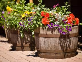 wildly whimsical barrel planter ideas garden club