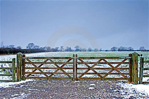 wooden gate next to a wintery field with black sheep