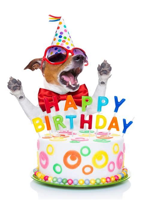 doggy birthday feliz cumpleanos enviar autenticas