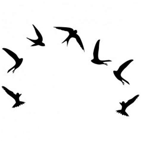 swift tattoo designs 53 best swifts birds images on bird
