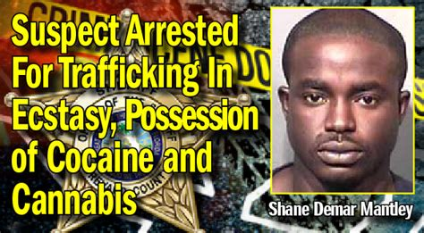 Brevard County Sheriff Warrant Search Suspect Arrested For Trafficking In Ecstasy Possession Of Cocaine And Cannabis