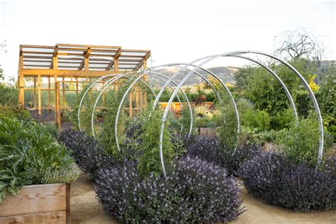 How To Create A Beautiful Backyard Homestead Design Collective Edible Landscaping Design