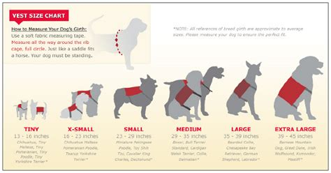 puppy paw size calculator infographic for vests portfolio of stephen barros
