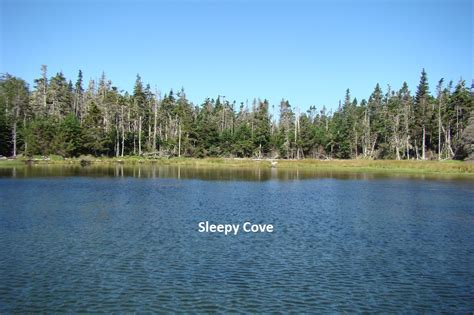 Scotia Property Records Hemlow Island 1 14 Acre Property In Scotia Sleepy Cove Shore Side Properties