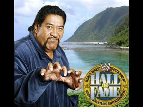 wwe hall of famer sika the wild samoan is back with a