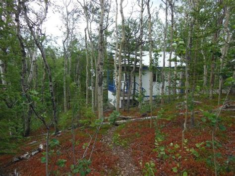Ridgetop Cabins by