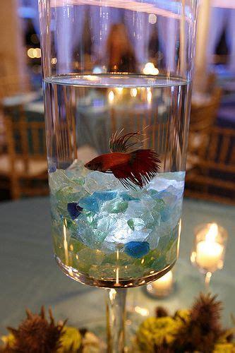 Fish In Vase Centerpiece by Best 25 Fish Centerpiece Ideas On Beta Fish