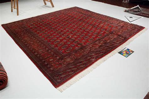 10 x 10 square rug bokhara square rug 10 x 10