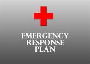 emergency response plans for businesses buy it now amp get