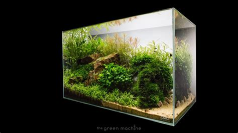 Aquascaping Ada by Escarpment Nature Aquarium By Findley Step By Step