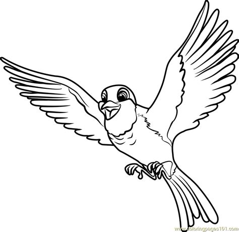 mynah bird coloring page fresh bird coloring page 19 awesome free printable mynah