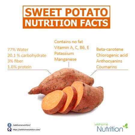 b protein nutrition facts 1000 ideas about sweet potato nutrition facts on