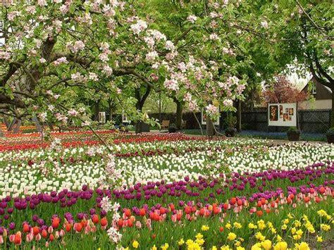Britzer Garten Konzert by Britzer Garten Berlin Stadtrundfahrt