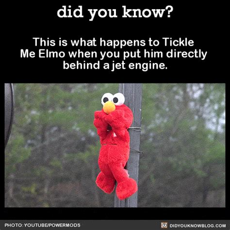Tickle Me Elmo Meme - jet engine gif find share on giphy