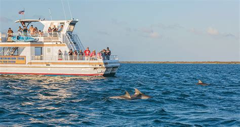 port aransas boat tours day with the dolphins texas highways