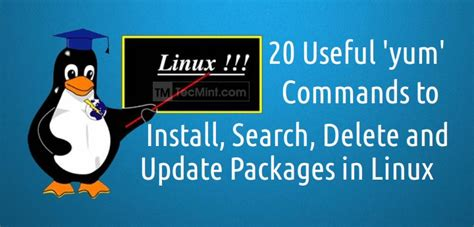 linux tutorial yum 20 linux yum yellowdog updater modified commands for