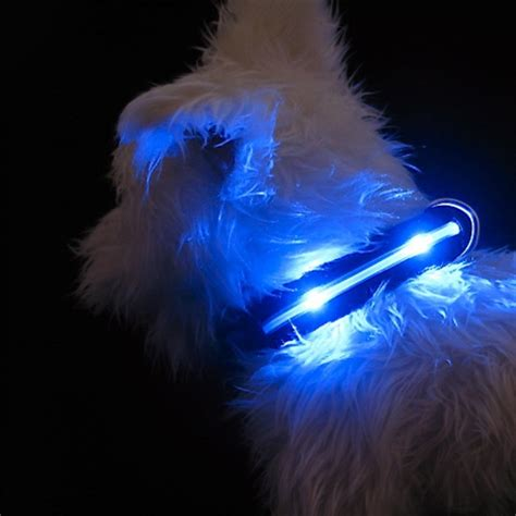 light up harness a light up harness the mhu ghu review bark and swagger