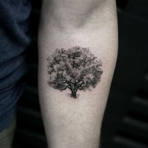 small oak tree tattoo tree tattoos designs bonsai redwood pine weeping